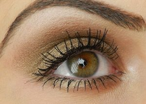 bobbi_brown_burnt_sugar_eyeshadow2