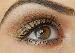 bobbi_brown_burnt_sugar_eyeshadow2